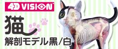 4D VISION 動物解剖モデル 猫解剖モデル 黒/白